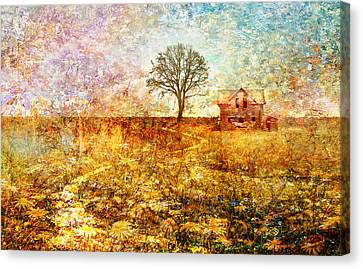 Bruce Springsteen Canvas Print - My Father's House by Mal Bray