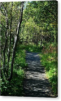 My Favorite Path Canvas Print