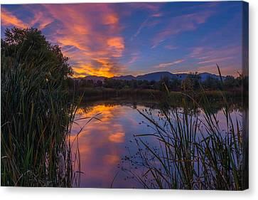 Fountain Creek Nature Center Canvas Print - My Favorite Pond by Luis A Ramirez