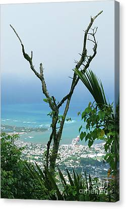 My Favorite Wishbone Between A Mountain And The Beach Canvas Print