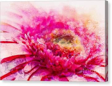 My Favourite Abstract Canvas Print by Clare Bevan