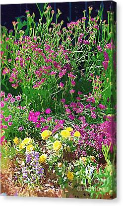 Canvas Print featuring the photograph My Garden   by Donna Bentley