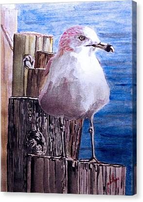 Canvas Print featuring the painting My Gull by Jim Phillips