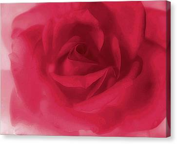 My Love Rose Canvas Print by The Art Of Marilyn Ridoutt-Greene