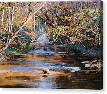My Secret Place Canvas Print by Ben Kiger