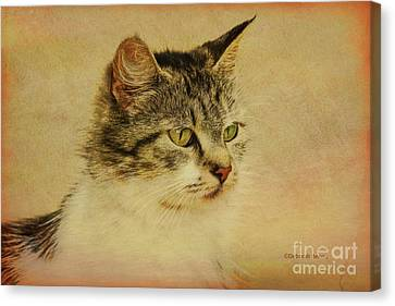 My Special Beauty Canvas Print
