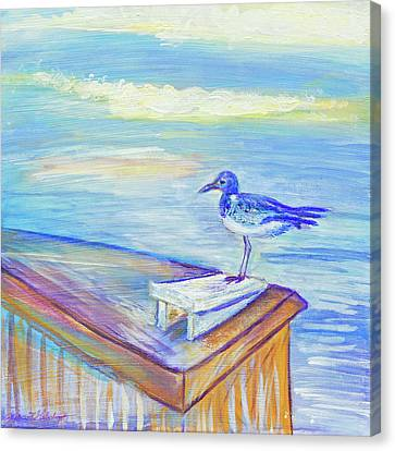 My Tern 3 Canvas Print