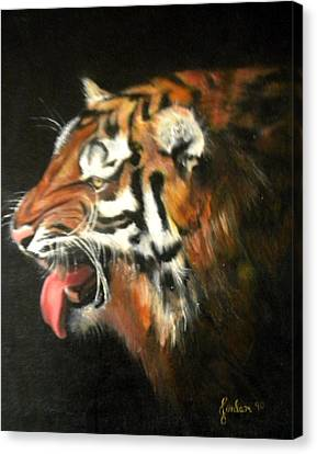 My Tiger - The Year Of The Tiger Canvas Print by Jordana Sands