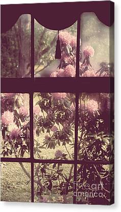 My Window Canvas Print by Mindy Sommers