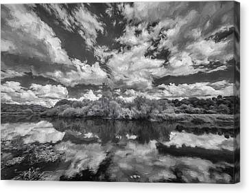 Myakka Dream II Canvas Print by Jon Glaser