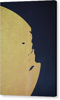 Mysteries Face Canvas Print by Michael L Gentile