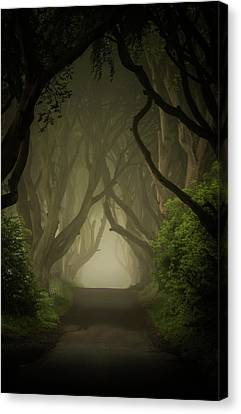 Mysterious Alley At Dawn Canvas Print by Jaroslaw Blaminsky