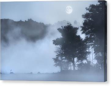 Mysterious Moon Canvas Print by Bill Wakeley