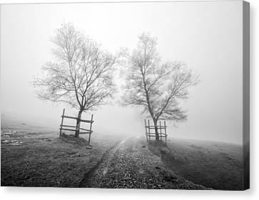 Mysterious Path Surrounding By Trees In Black And White Canvas Print by Mikel Martinez de Osaba