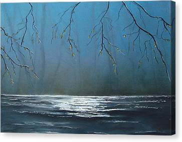 Mysterious Water Canvas Print by Veronique Radelet