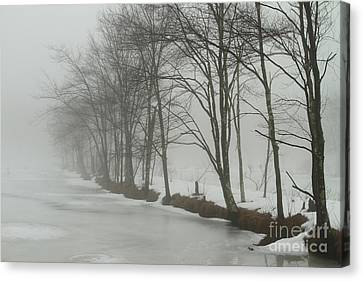 Mysterious Winter  Canvas Print by Karol Livote