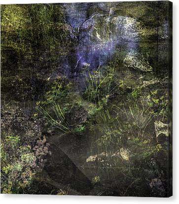 Mysterious Woods Canvas Print by Tommytechno Sweden