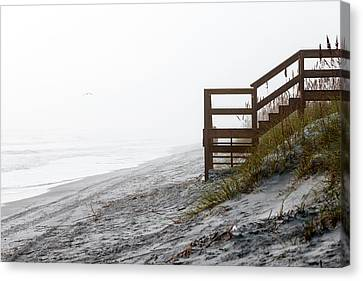 Canvas Print featuring the photograph Mystery Beach by Anthony Baatz