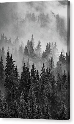 Canvas Print featuring the photograph Mystic  by Dustin LeFevre
