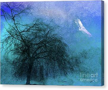 Mystic Flight Canvas Print by Callan Percy