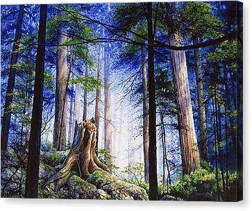 Canadian Art Canvas Print - Mystic Forest Majesty by Hanne Lore Koehler