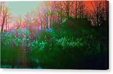 Mystic Meadow Canvas Print