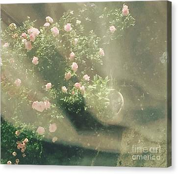 Mystic  Roses Canvas Print by Trilby Cole