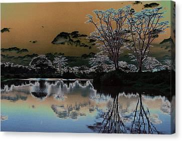 Mystical Africa Canvas Print