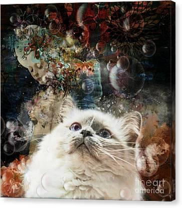 Mystical  Canvas Print by Monique Hierck