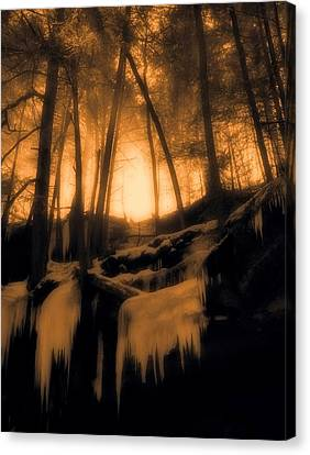 Mystical Morning Light In The Forest Canvas Print by Dan Sproul