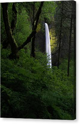 Mystical Waterfall 2 Canvas Print by Larry Marshall