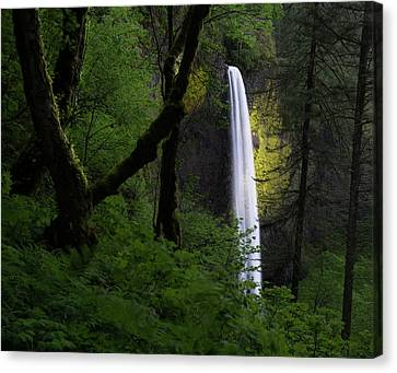 Mystical Waterfall Canvas Print by Larry Marshall