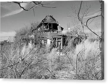 Canvas Print - N C Ruins 2 by Mike McGlothlen