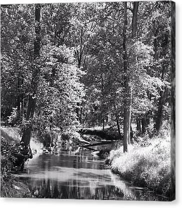 Canvas Print featuring the photograph Nadine's Creek In Black And White by Kathy Kelly