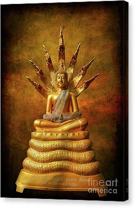 Naga Buddha Canvas Print by Adrian Evans
