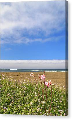 Canvas Print featuring the photograph Naked Ladies At The Beach by James Eddy