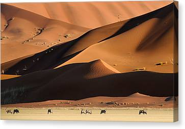 Namib Dunes Canvas Print by Muriel Vekemans