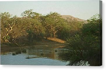Namibian Waterway Canvas Print by Ernie Echols