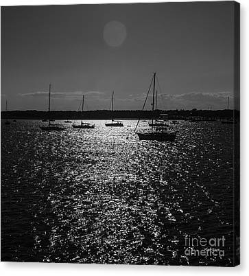 Nantucket Sailboats Canvas Print by Michelle Wiarda