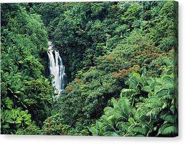 Nanue Falls Hawaii Canvas Print by Greg Vaughn