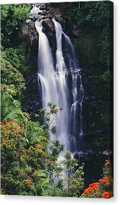 Nanue Falls Canvas Print