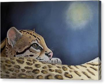 Canvas Print featuring the painting Nap Time  by Ceci Watson