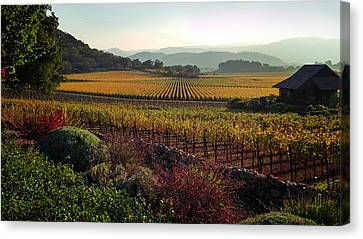 Napa Valley California Canvas Print