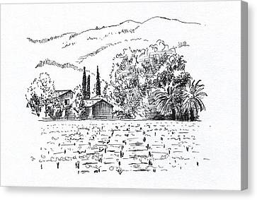 Wine Scene Canvas Print - Napa Valley by Masha Batkova