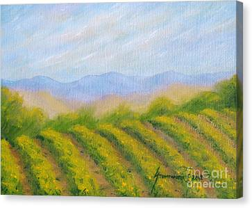 Napa Valley Vineyard Canvas Print by Jerome Stumphauzer