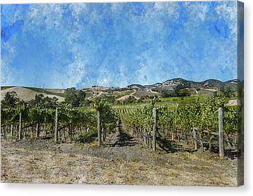 Napa Valley Vineyard Landscape Canvas Print by Brandon Bourdages