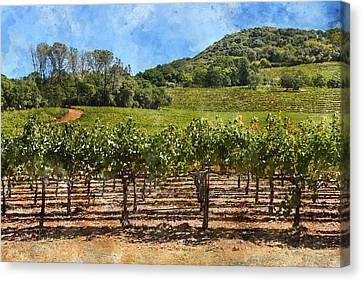 Napa Valley Vineyard On A Nice  Day Canvas Print by Brandon Bourdages