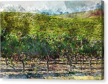 Napa Valley Vineyards Canvas Print by Brandon Bourdages