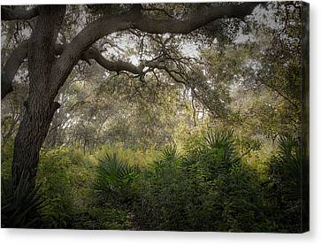 Naples Preserve Canvas Print