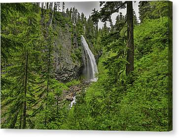 Narada Falls Mt. Rainier National Park Canvas Print by Sam Amato